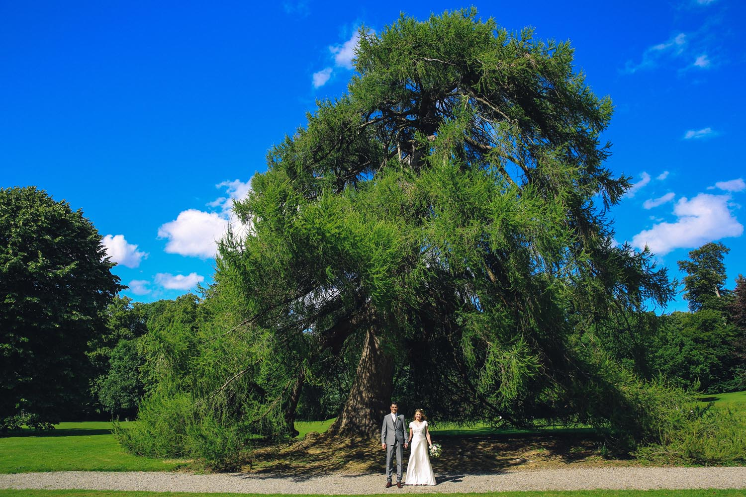 Couple standing underneath a beautiful tree on Killruddery Estate