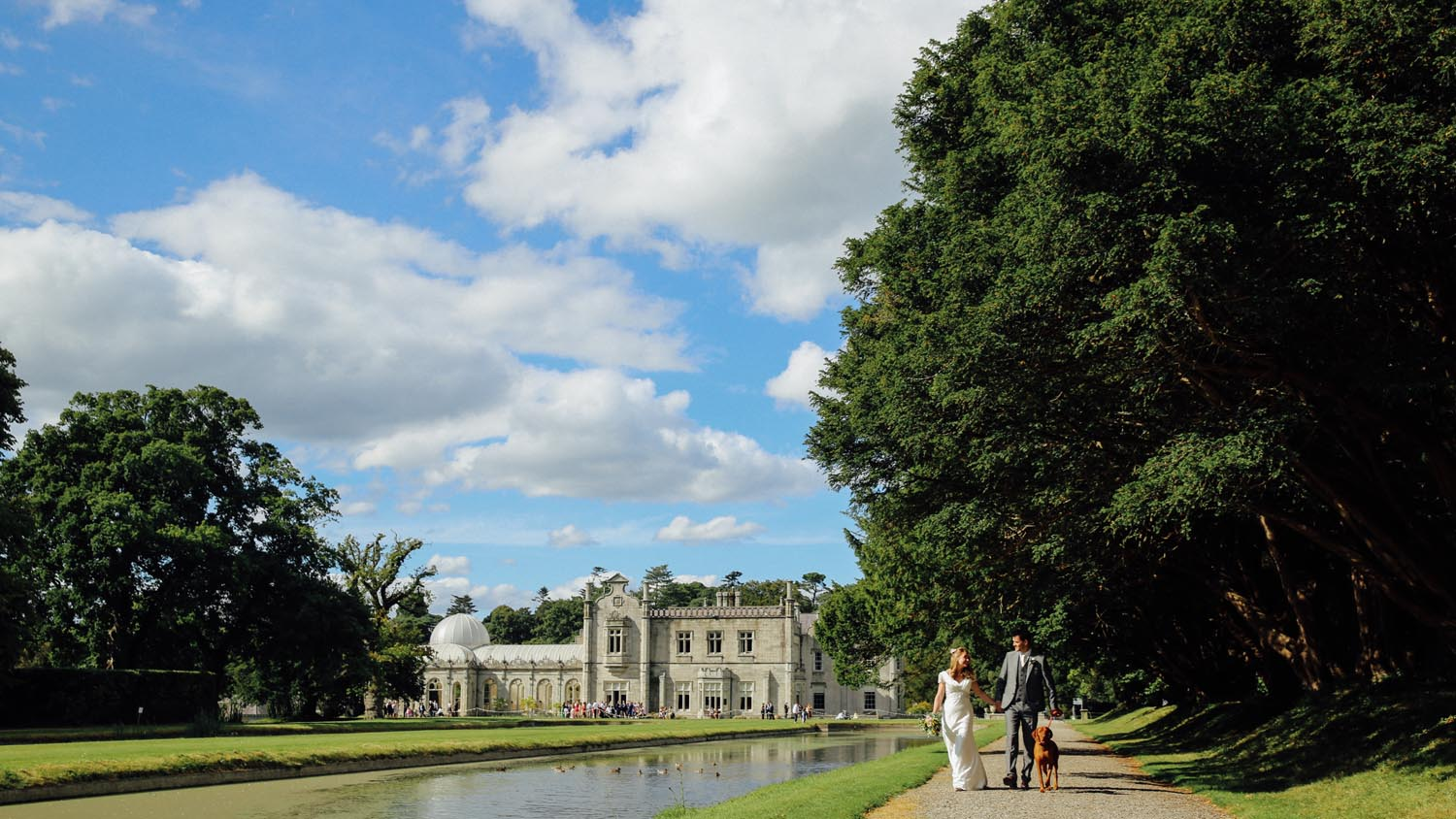 Couple walking their dog on their wedding day at Killruddery House, Co. Wicklow